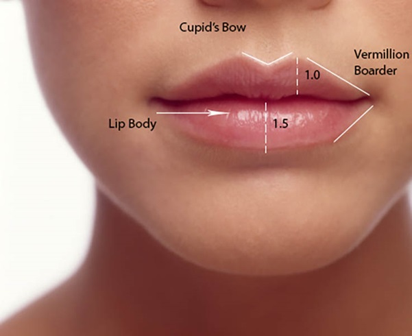 how to know how much lip filler